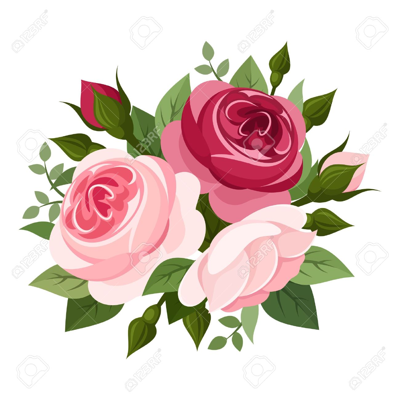 Red And Pink Roses Vector Illustration Royalty Free Cliparts