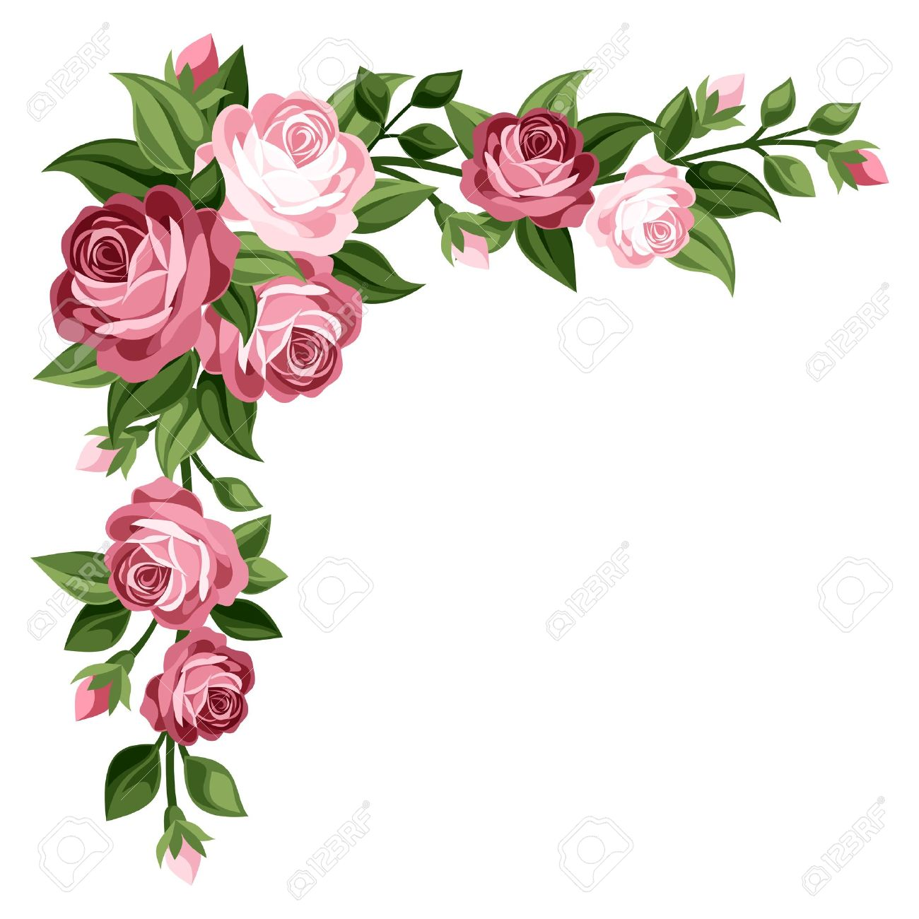 Regala flores al forer@ de arriba                 - Página 2 21498078-Rosas-de-la-vendimia-rosas-capullos-de-rosa-y-hojas-de-ilustraci-n-Foto-de-archivo