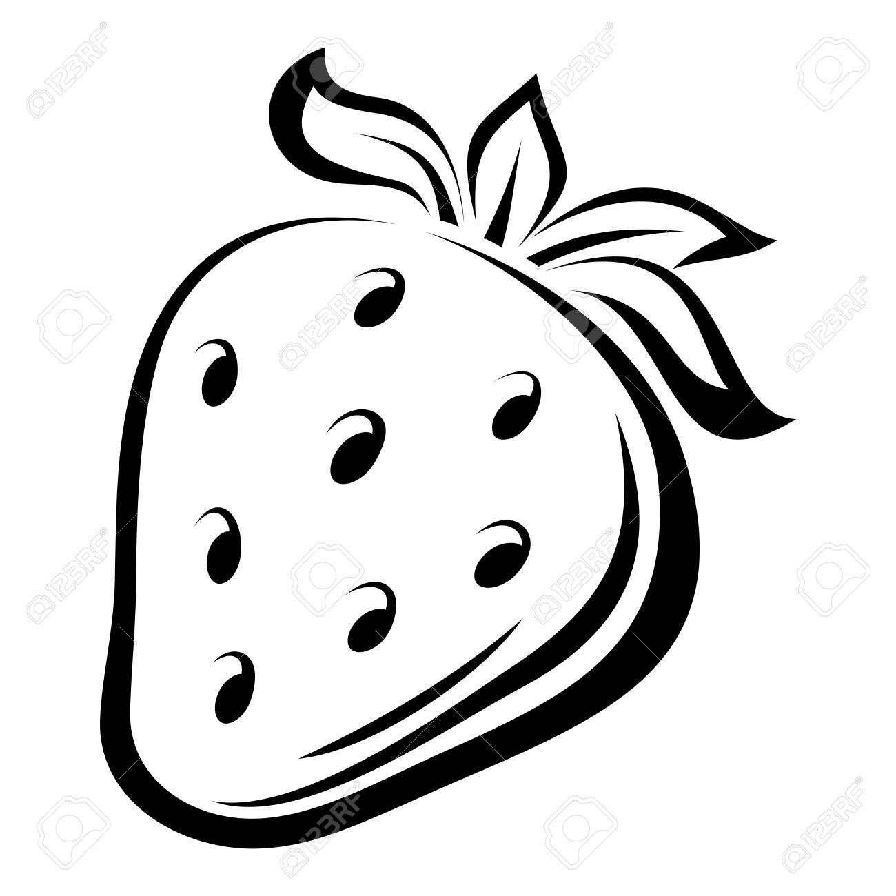 Contour Drawing Of Strawberry Vector Illustration Royalty Free ... for Clipart Strawberry Black And White  599kxo