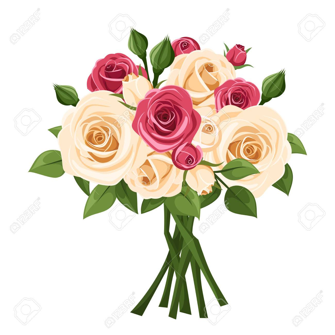 bouquet of red and white roses vector illustration royalty free rh 123rf com rose vector pattern rose vector png