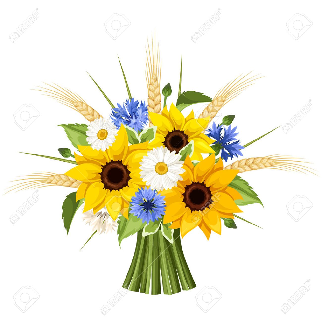 Bouquet Of Sunflowers Daisies Cornflowers And Ears Wheat Vector Illustration Stock