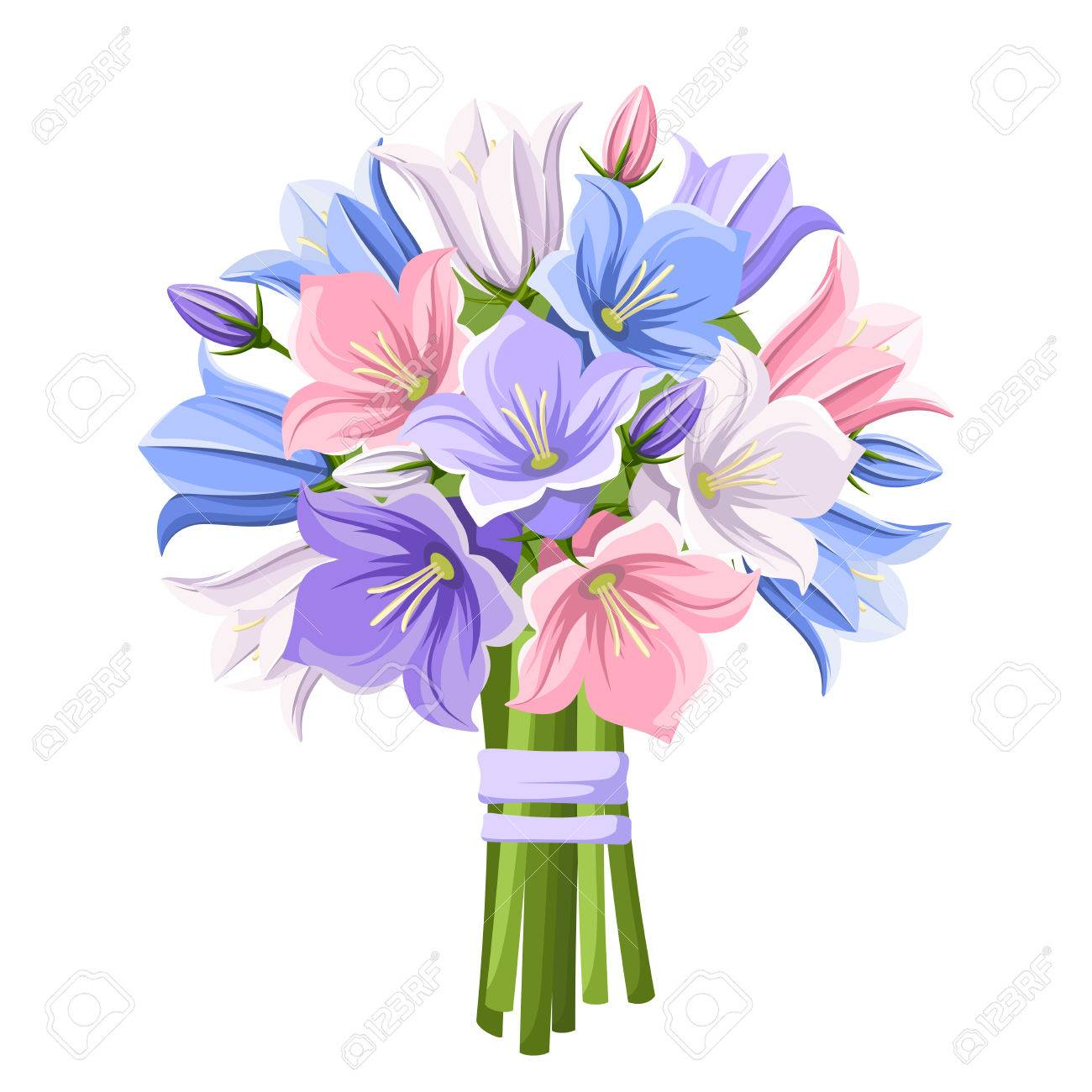 Bouquet of blue purple pink and white bluebell flowers isolated bouquet of blue purple pink and white bluebell flowers isolated on a white background mightylinksfo Gallery