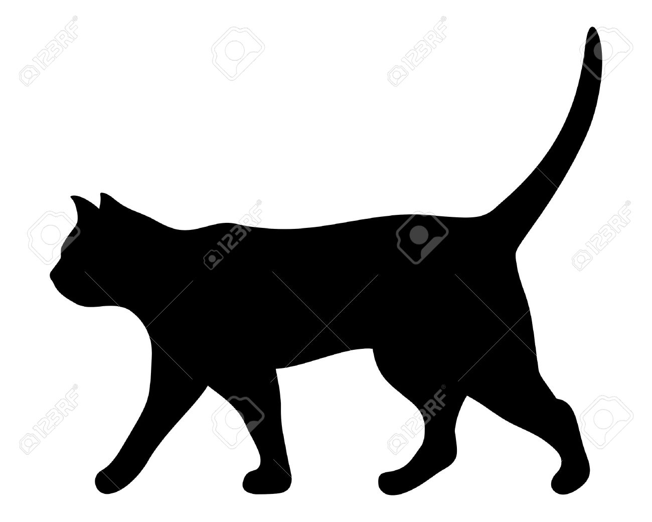 Vector black silhouette of a walking cat. - 56884483