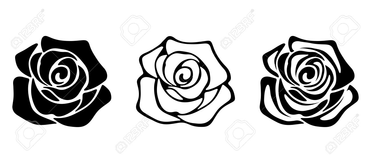 Set of three vector black silhouettes of rose flowers isolated set of three vector black silhouettes of rose flowers isolated on a white background stock mightylinksfo