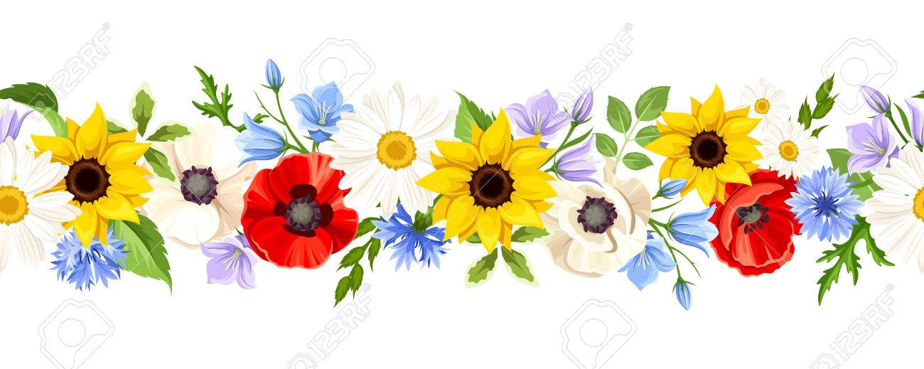 Vector horizontal seamless background with colorful wild flowers on a white background. - 61538704