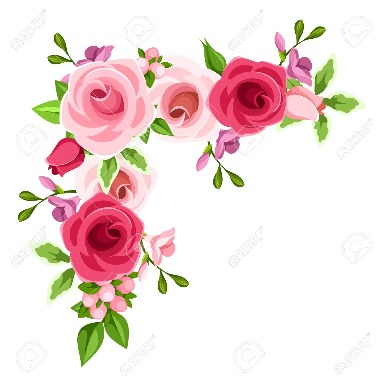 A Vector corner background with red, pink and purple roses and freesia flowers. - 74872490