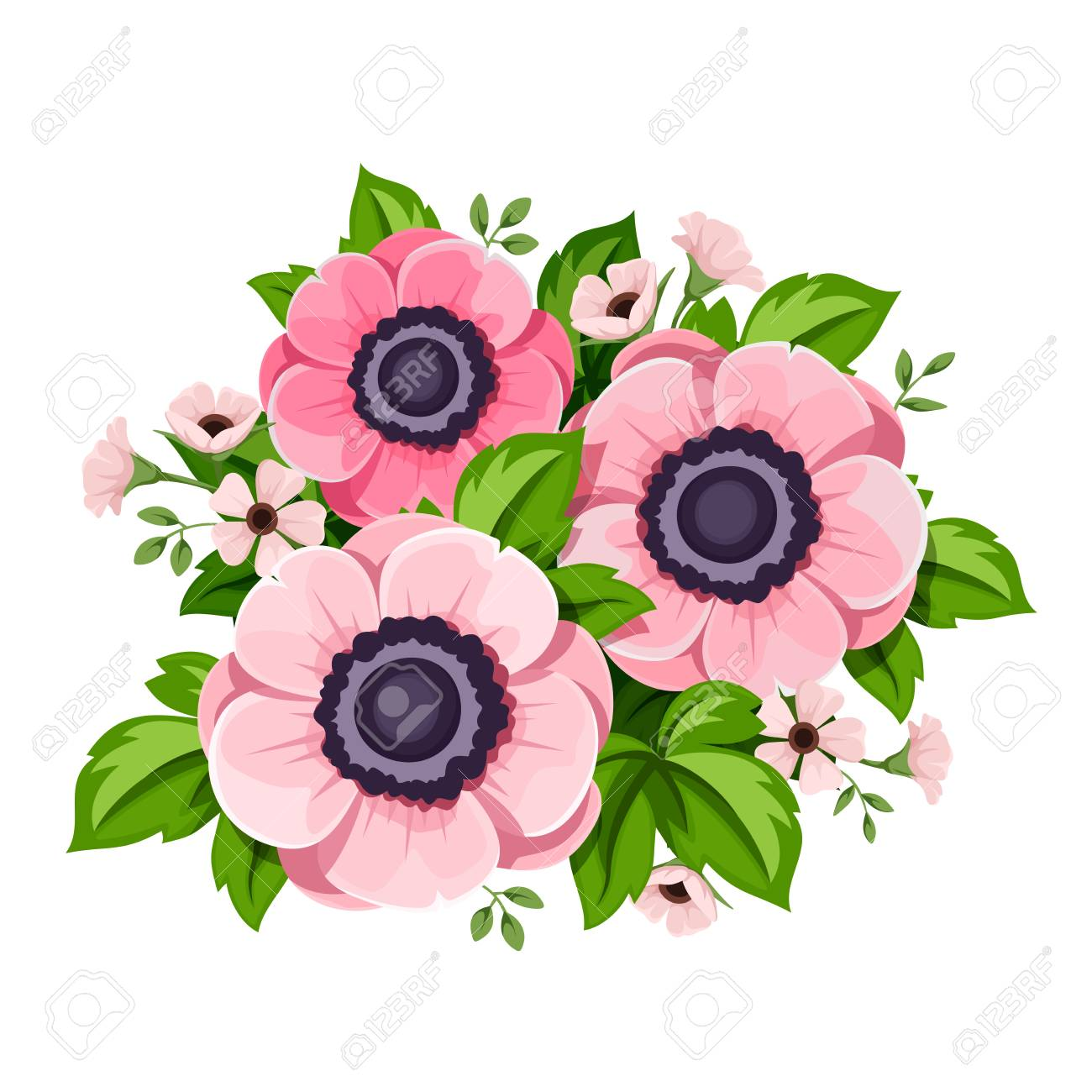 Vector pink anemone flowers isolated on a white background royalty vector vector pink anemone flowers isolated on a white background mightylinksfo