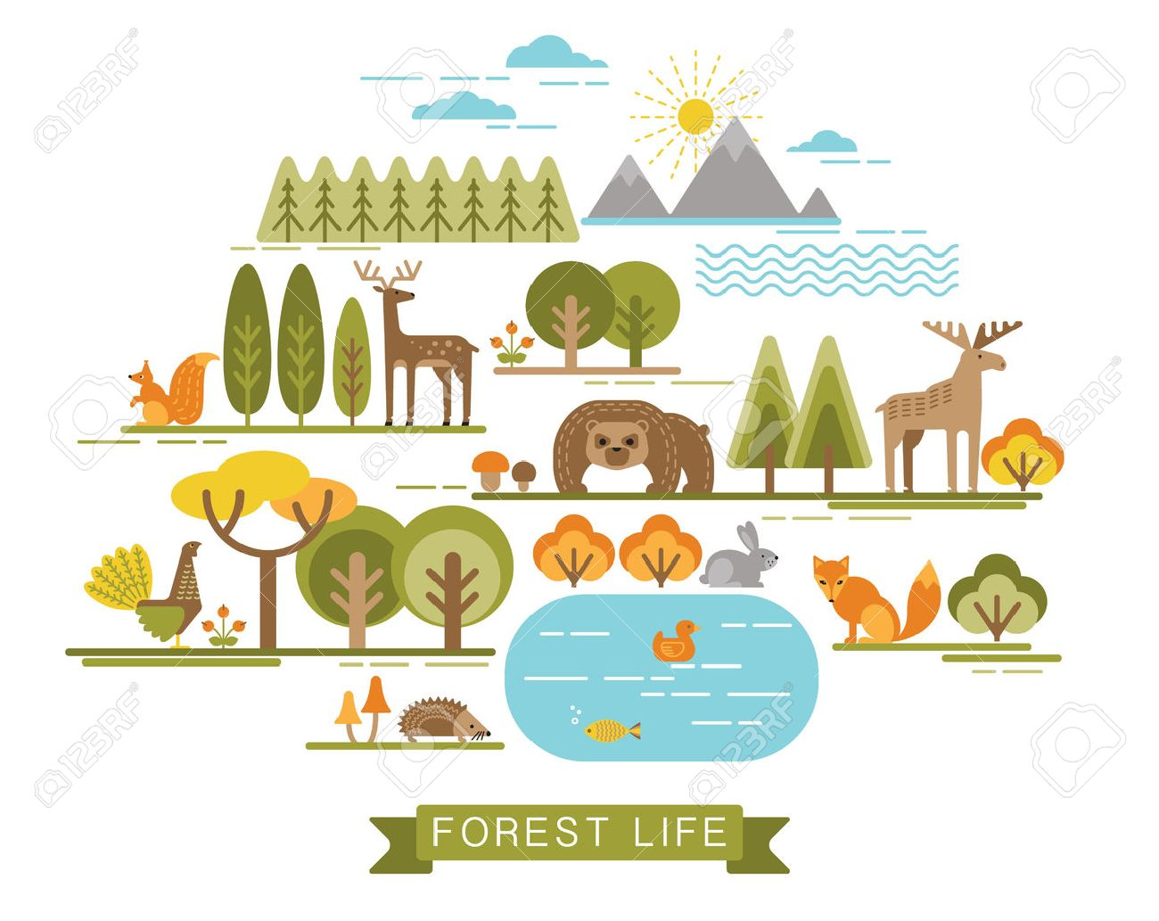Vector illustration of forest life. Forest flora and fauna. Trendy graphic style. - 48016101