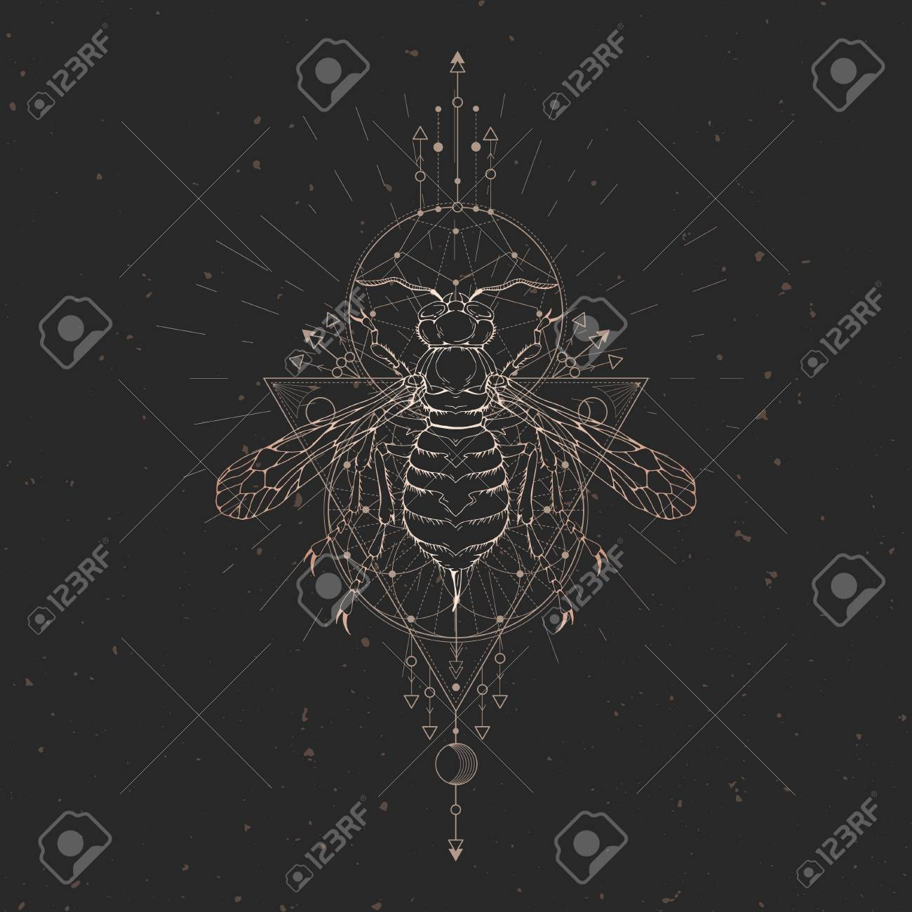 13fee3a63 Vector illustration with hand drawn wasp and Sacred geometric symbol on  black vintage background. Abstract