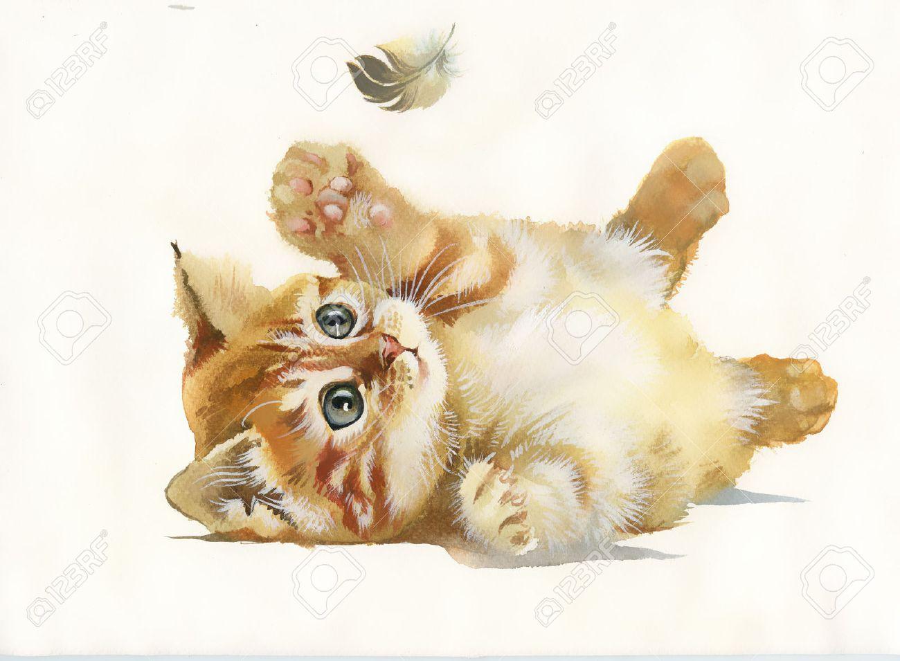 Aquarelle chat de la collection animale et plume Banque dimages , 23482441