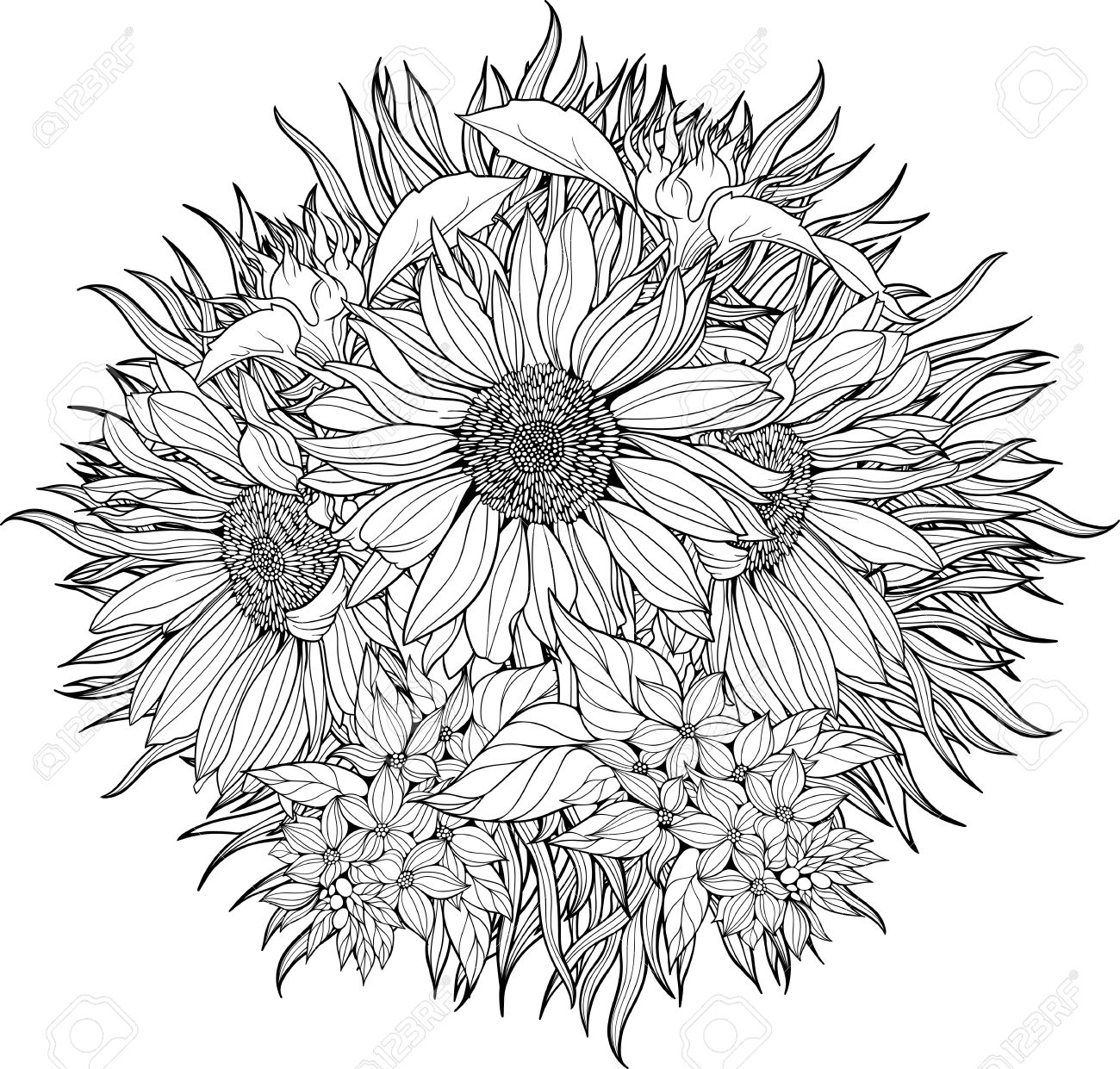 Close-up View Of Bunch Of Sunflowers. Coloring Page. Royalty Free ...