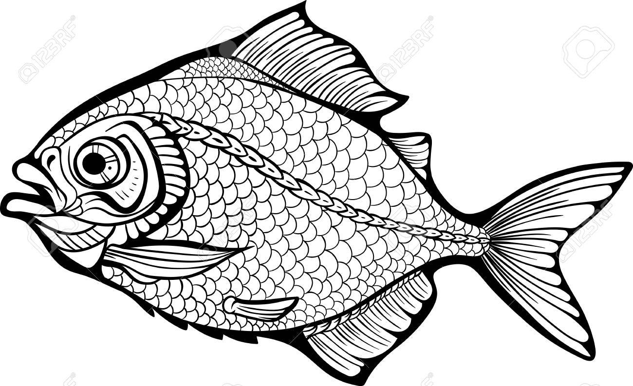 Sea Fish Coloring Page Stock Vector