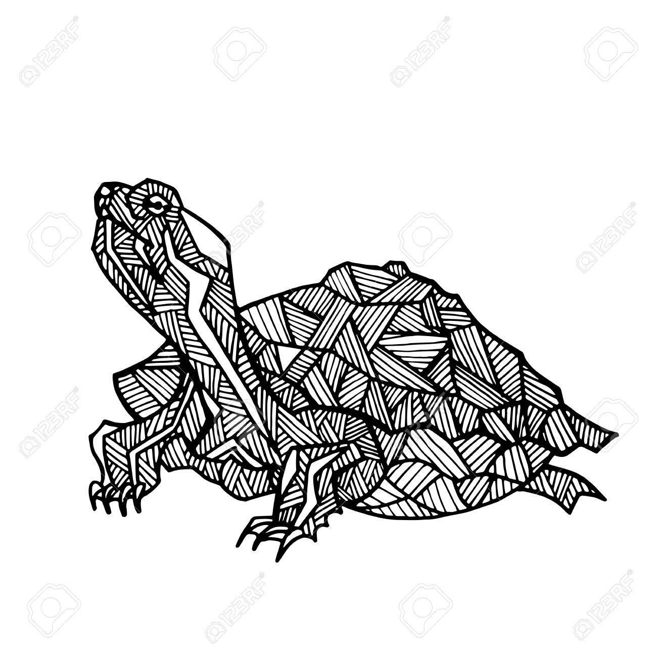 Vector Darstellung Der Hand Schildkröte Gezeichnet. Schwarze ...
