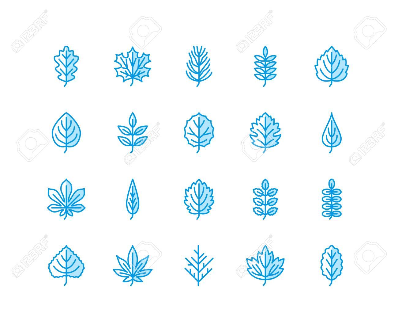Autumn leaves flat line icons. Leaf types, rowan, birch tree, maple, chestnut, oak, cedar pine, linden,guelder rose Thin signs of nature plants. - 110023448