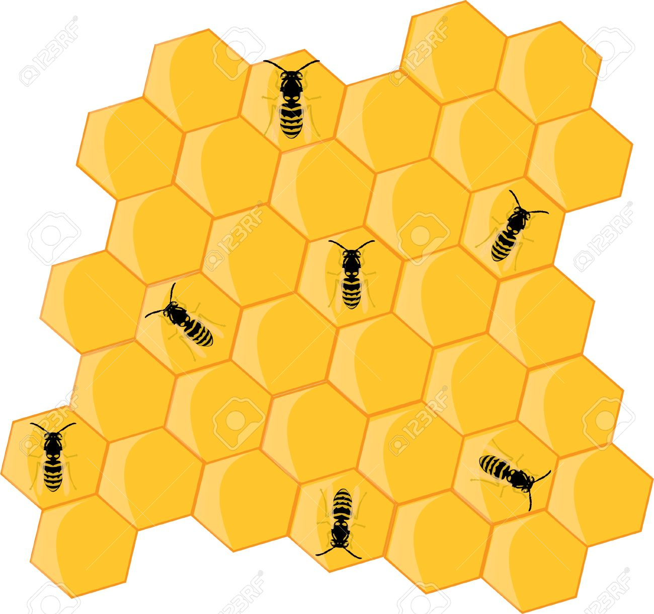 Honey Bees And Hive Stock Vector