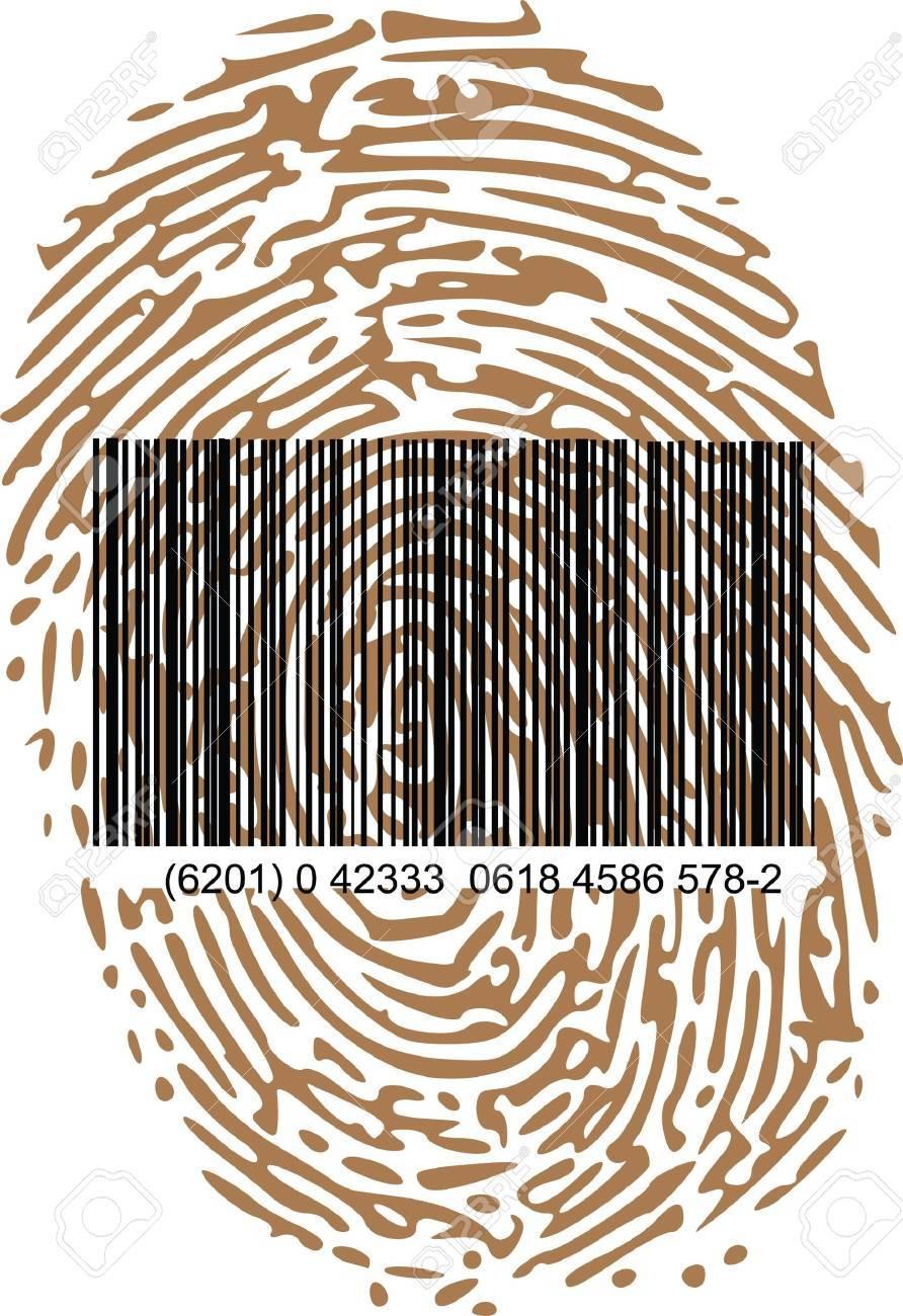 barcode and thumbprint Stock Vector - 13700288