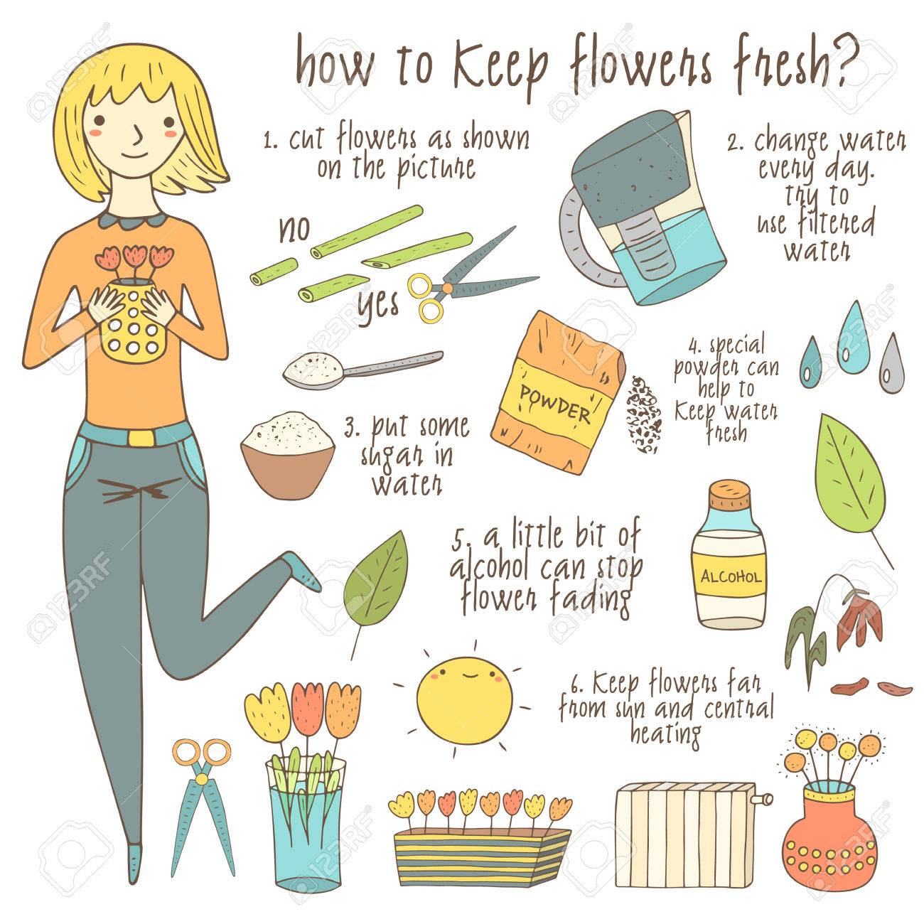 Flowers in vase change water - Cute Hand Drawn Doodle Instruction About How To Keep Flowers Fresh Including Girl Vase