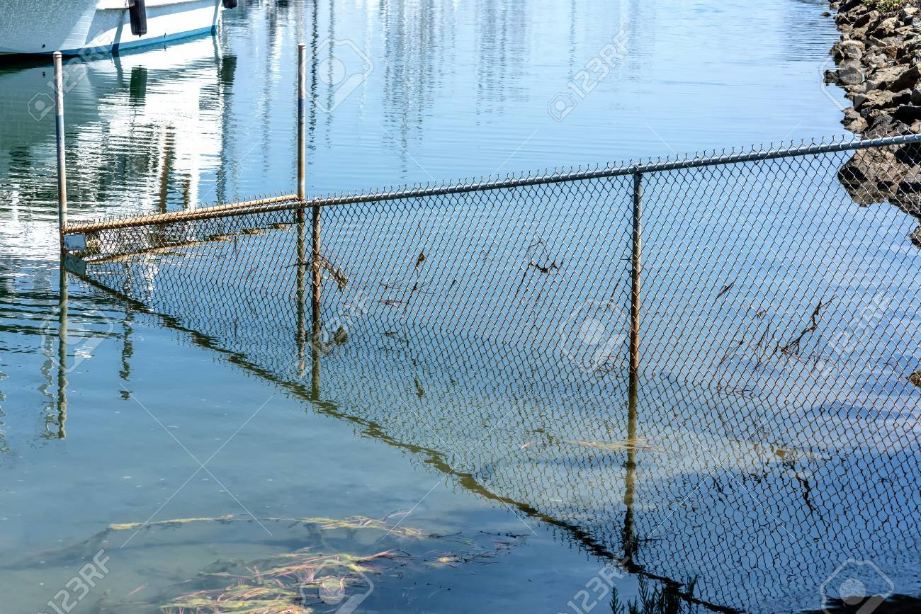 Bay Wire Mesh Fence Partly Drowned In Water And Its Reflection Stock ...