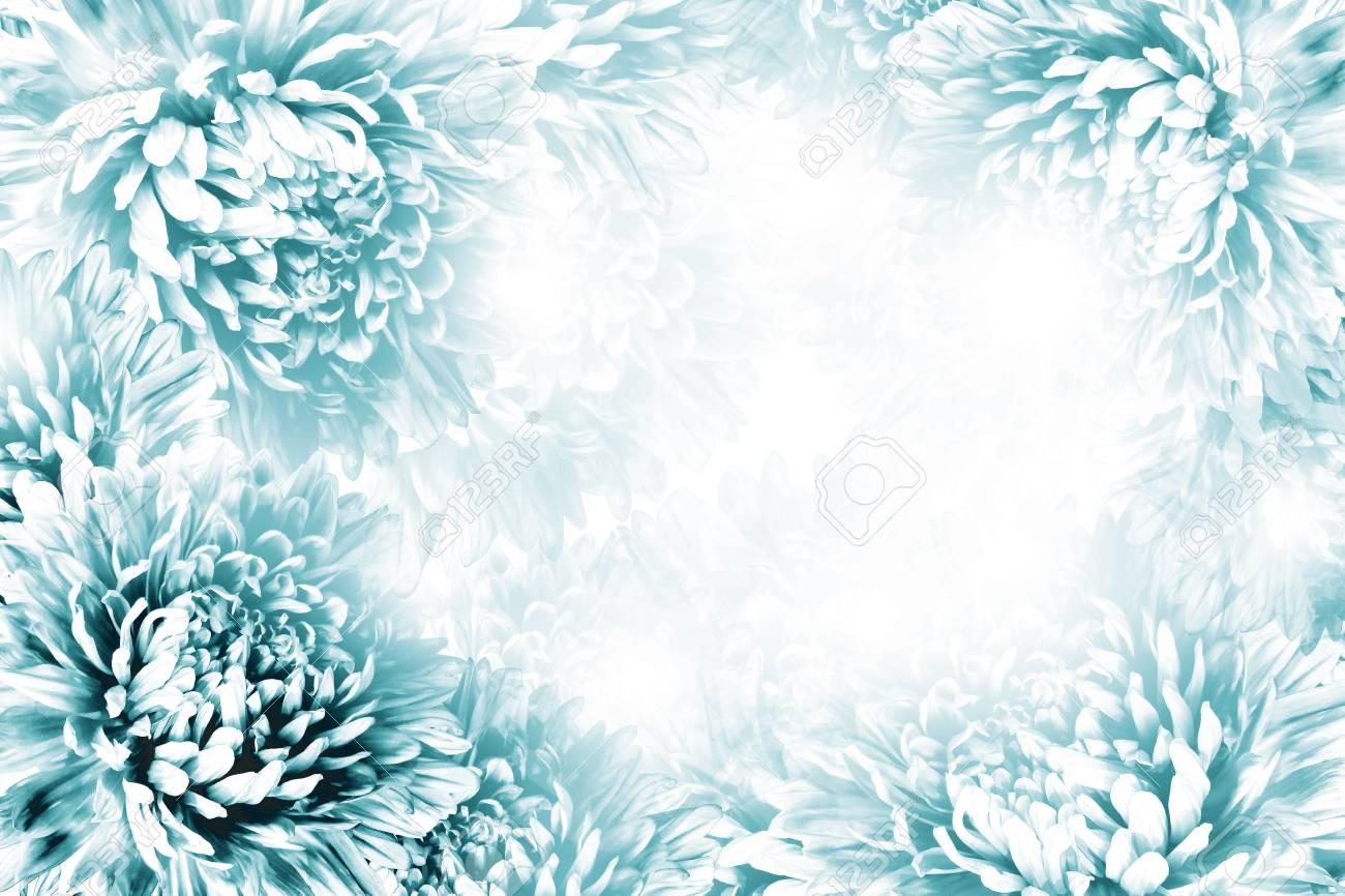 Floral Hermoso Fondo Blanco Turquesa. Composición De Flores Marco De ...