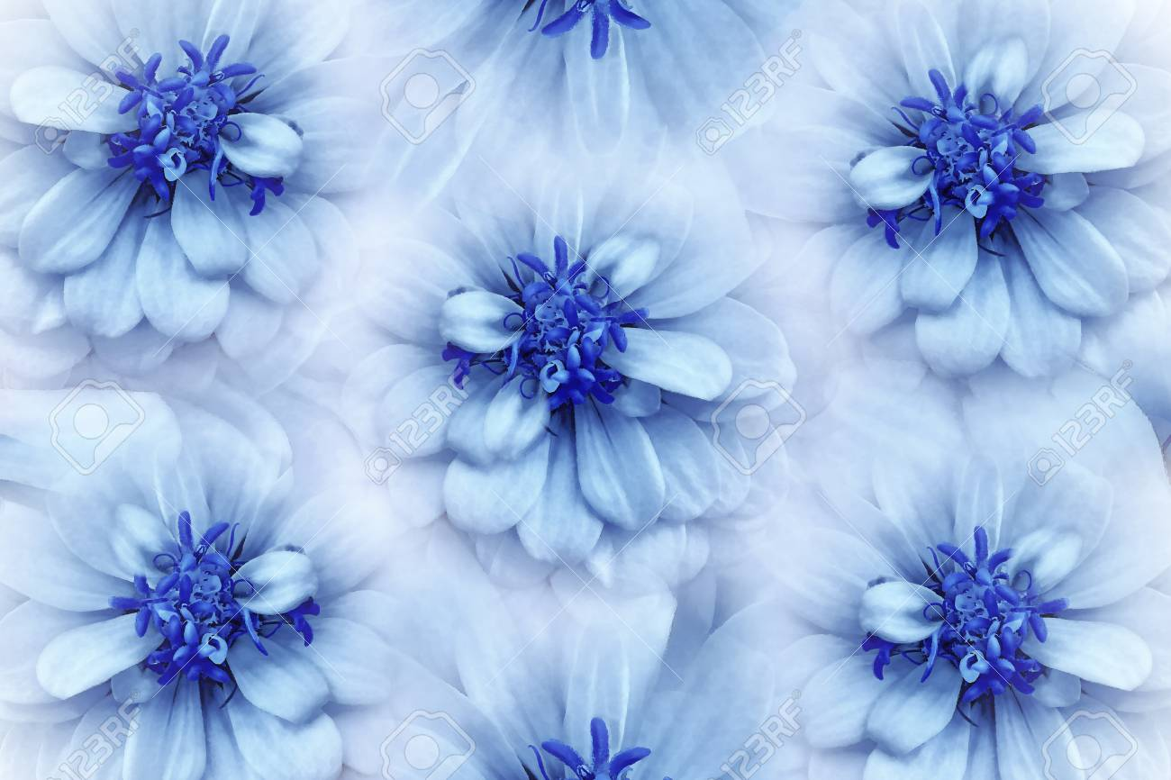 Floral Watercolor White Blue Background Flowers Daisies Close Up On