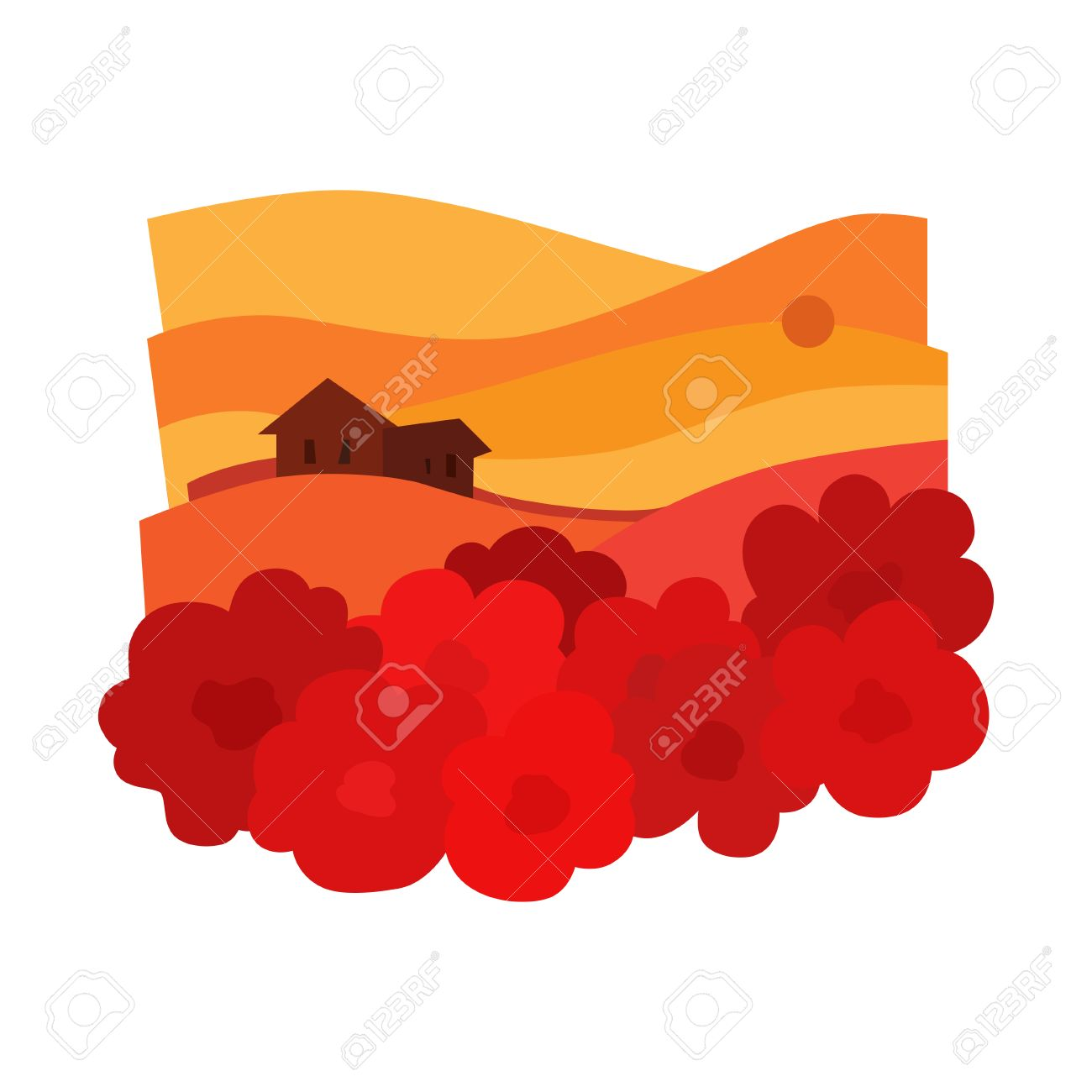 the landscape in the sunset with poppies and houses poppy field rh 123rf com Free Cartoon Sun Free Vector Textures