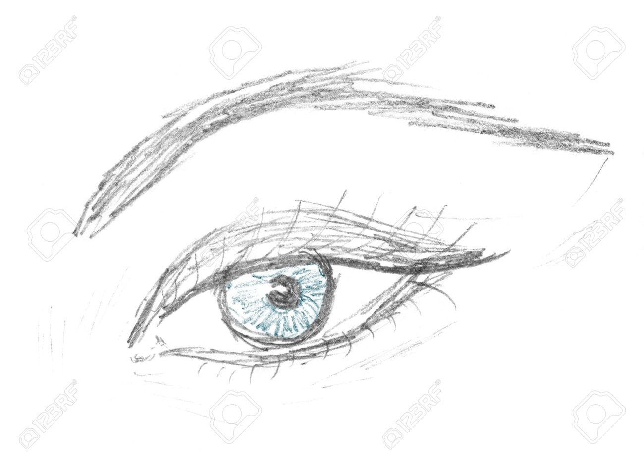 Human eye and eyebrow sketch pencil drawing stock photo 6513358