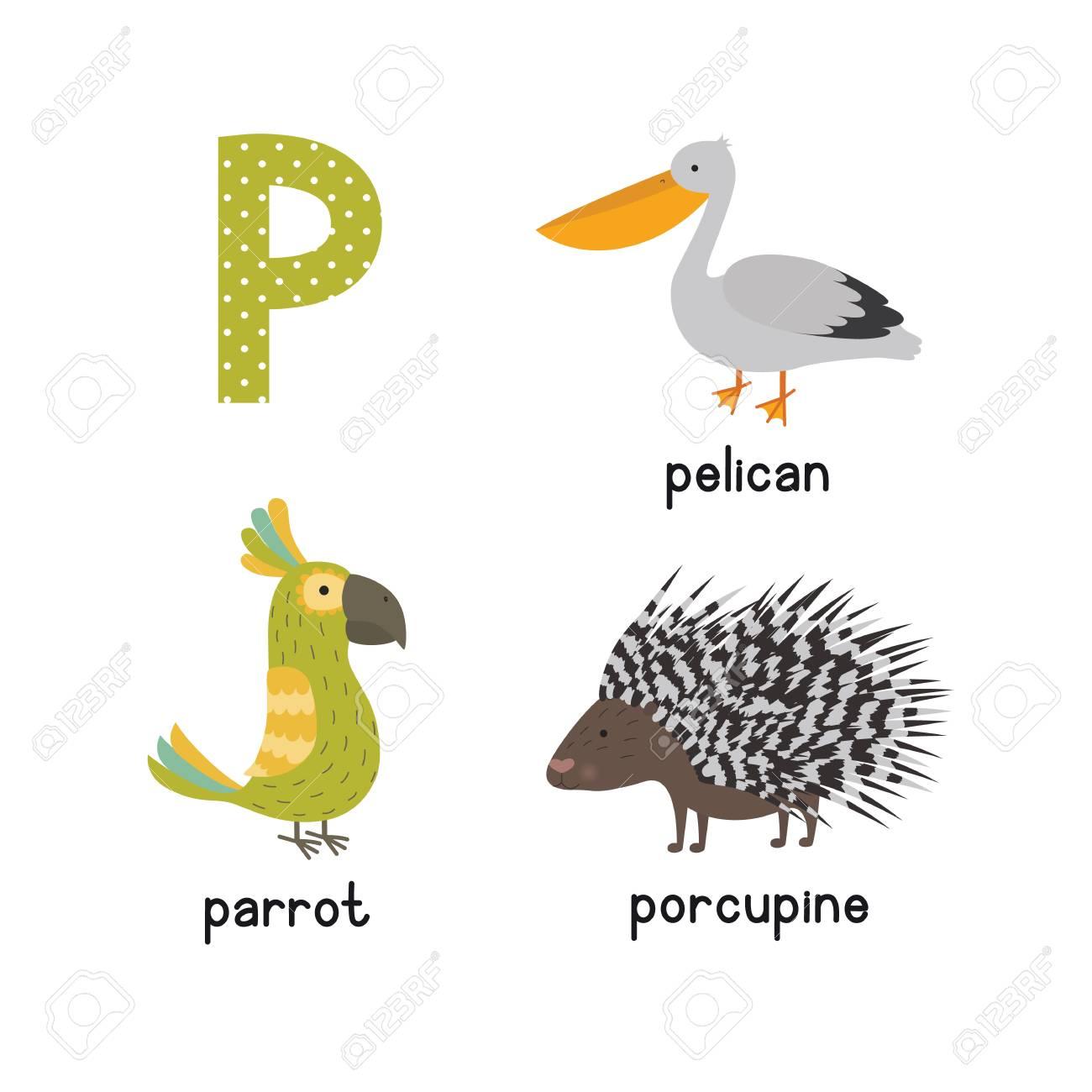 cute niños zoológico abecedario alfabeto p letra de dibujos animados