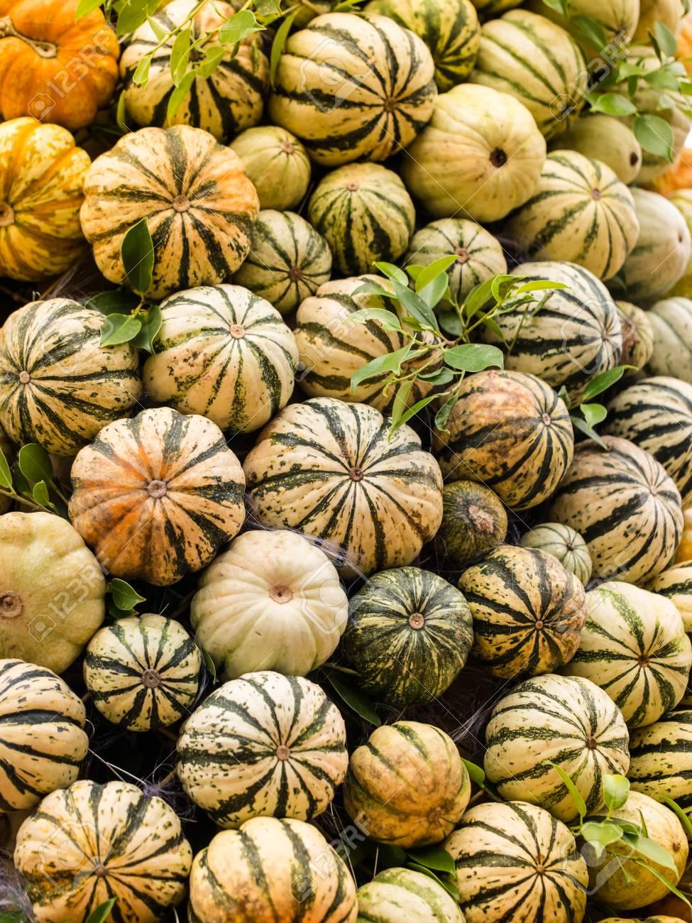 A Bunch Of Pumpkins At An Open Air Farmers Market Background