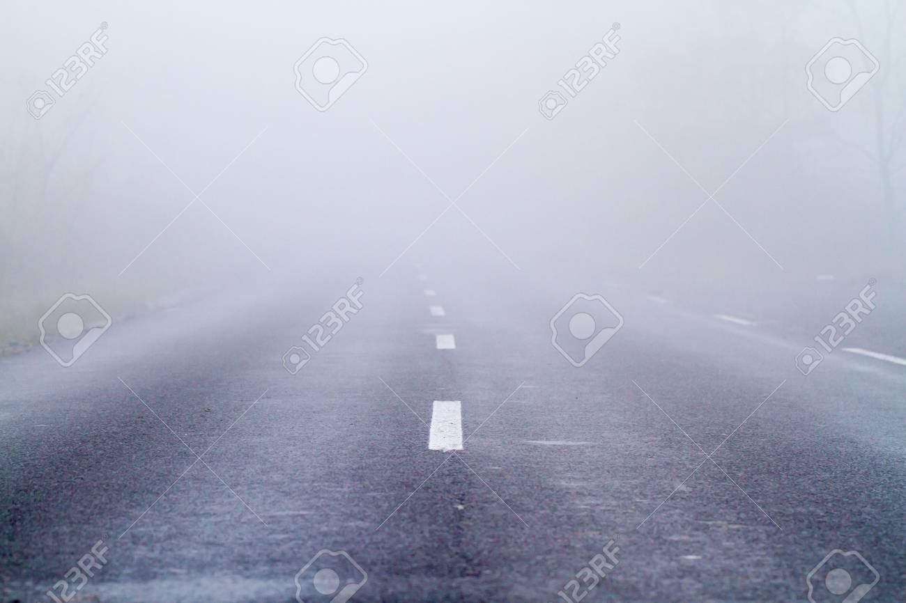 Asphalt road in an autumn fog Stock Photo - 16838862