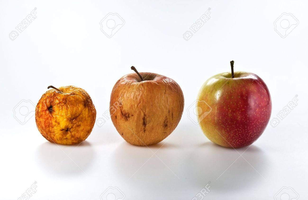 Apples in different stages of ageing, isolated on white Stock Photo - 5636365