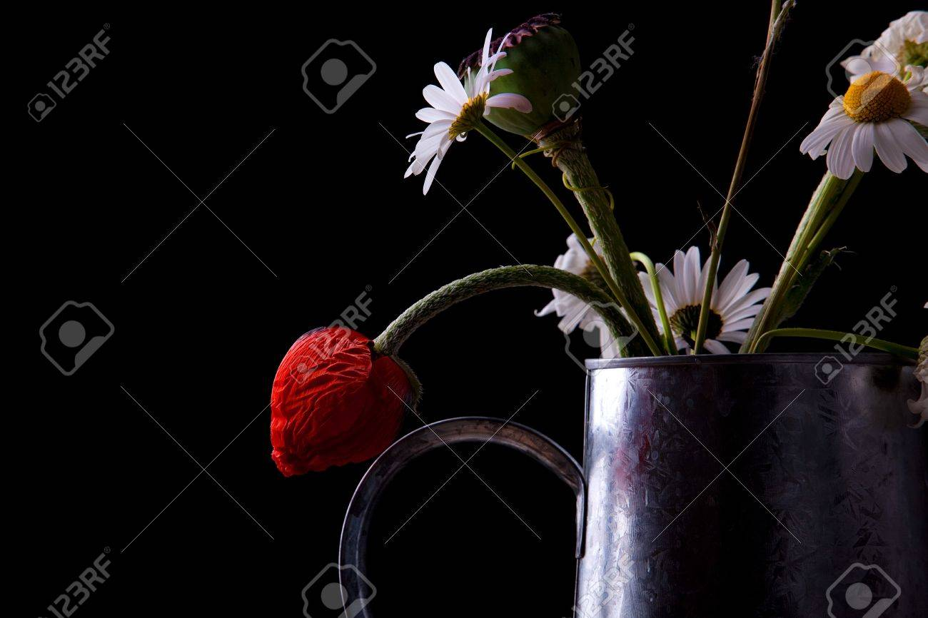 Still Life with poppies and daisies in old can Stock Photo - 7721302