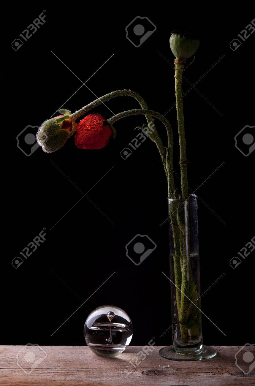 Still Life with poppies and ball of glass Stock Photo - 7721300