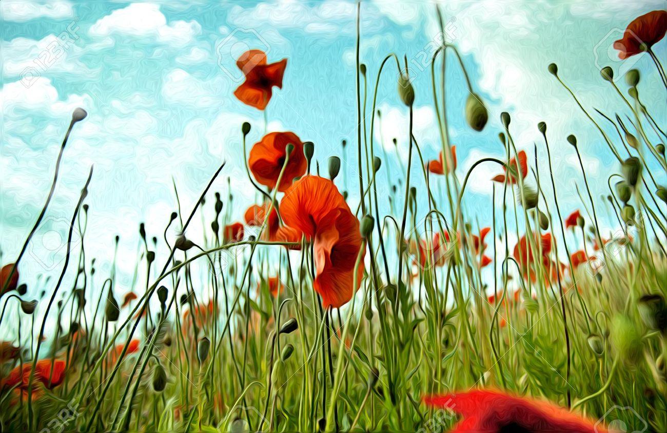 Illustration of red poppy flowers in oil painting style stock photo illustration illustration of red poppy flowers in oil painting style mightylinksfo