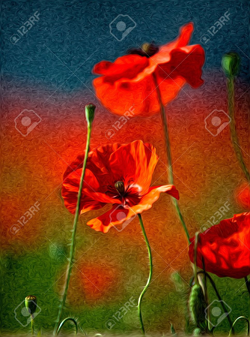 Illustration of Red Poppy Flowers in Oil Painting Style Stock Illustration - 10903203