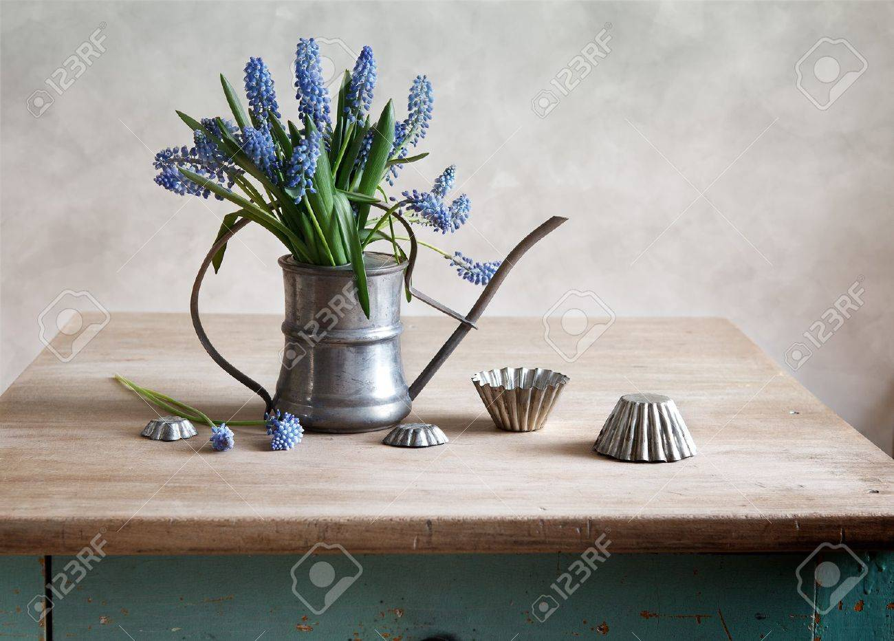 Still life with grape hyacinths arranged in an antique watering can with old moulds on a rustic wooden kitchen table Stock Photo - 13725283