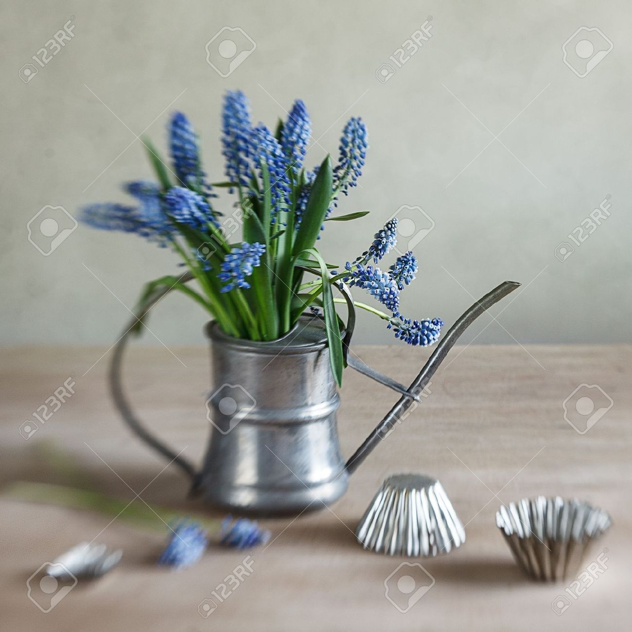 Still life with grape hyacinths arranged in an antique watering can with old moulds on a rustic wooden kitchen table Stock Photo - 13725167