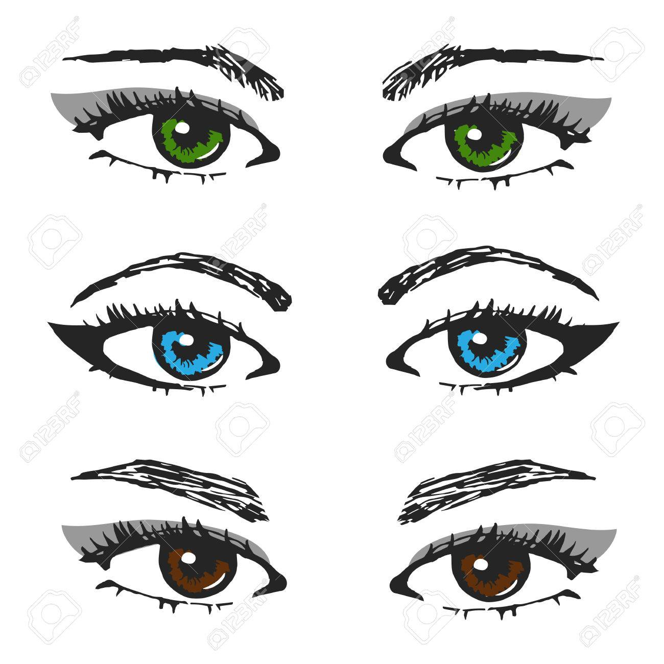Set Of Female Eye Sketchesdifferent Types Of Eyebrows And The Color