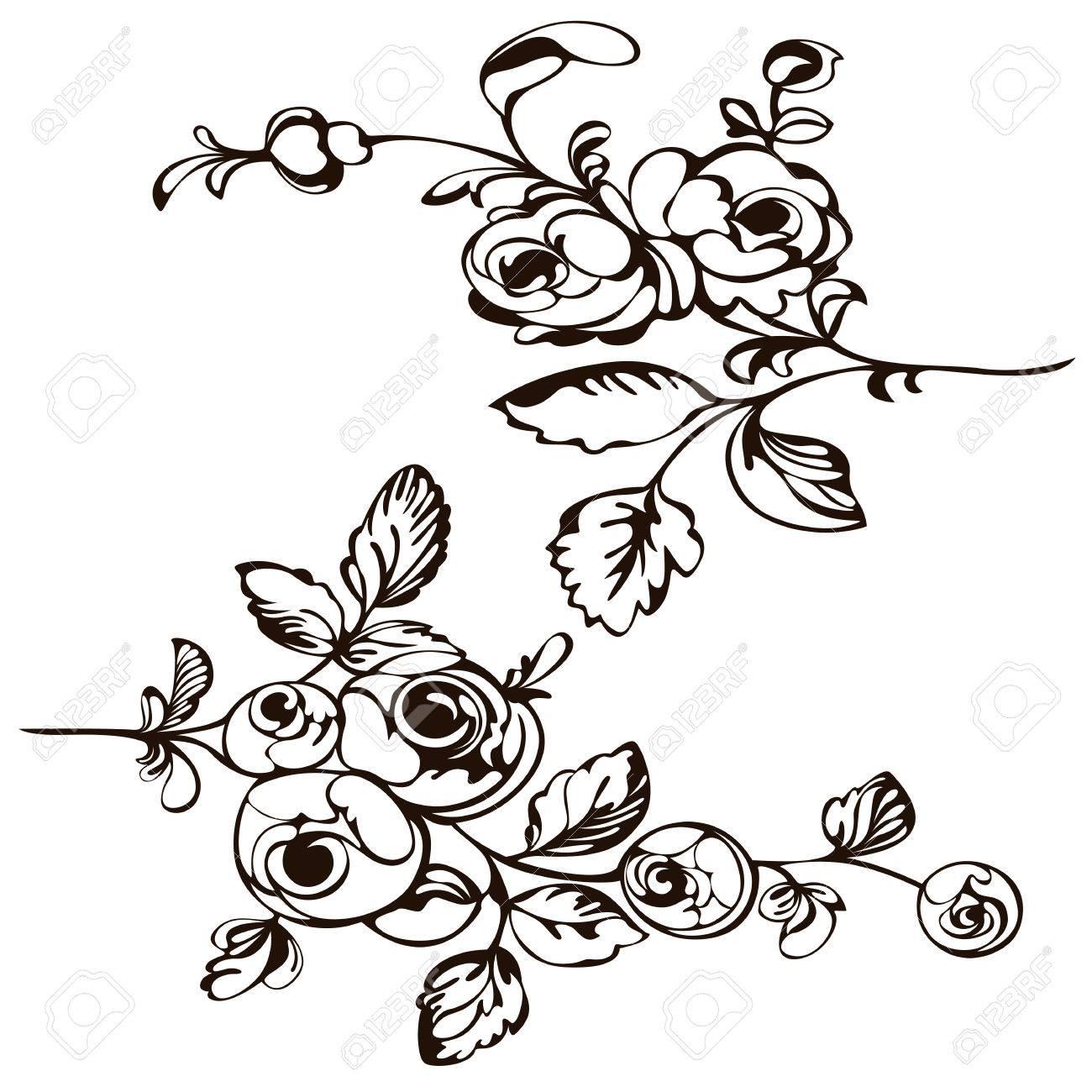 Drawing Pattern Flower Painting Closeup Rose Black White Royalty