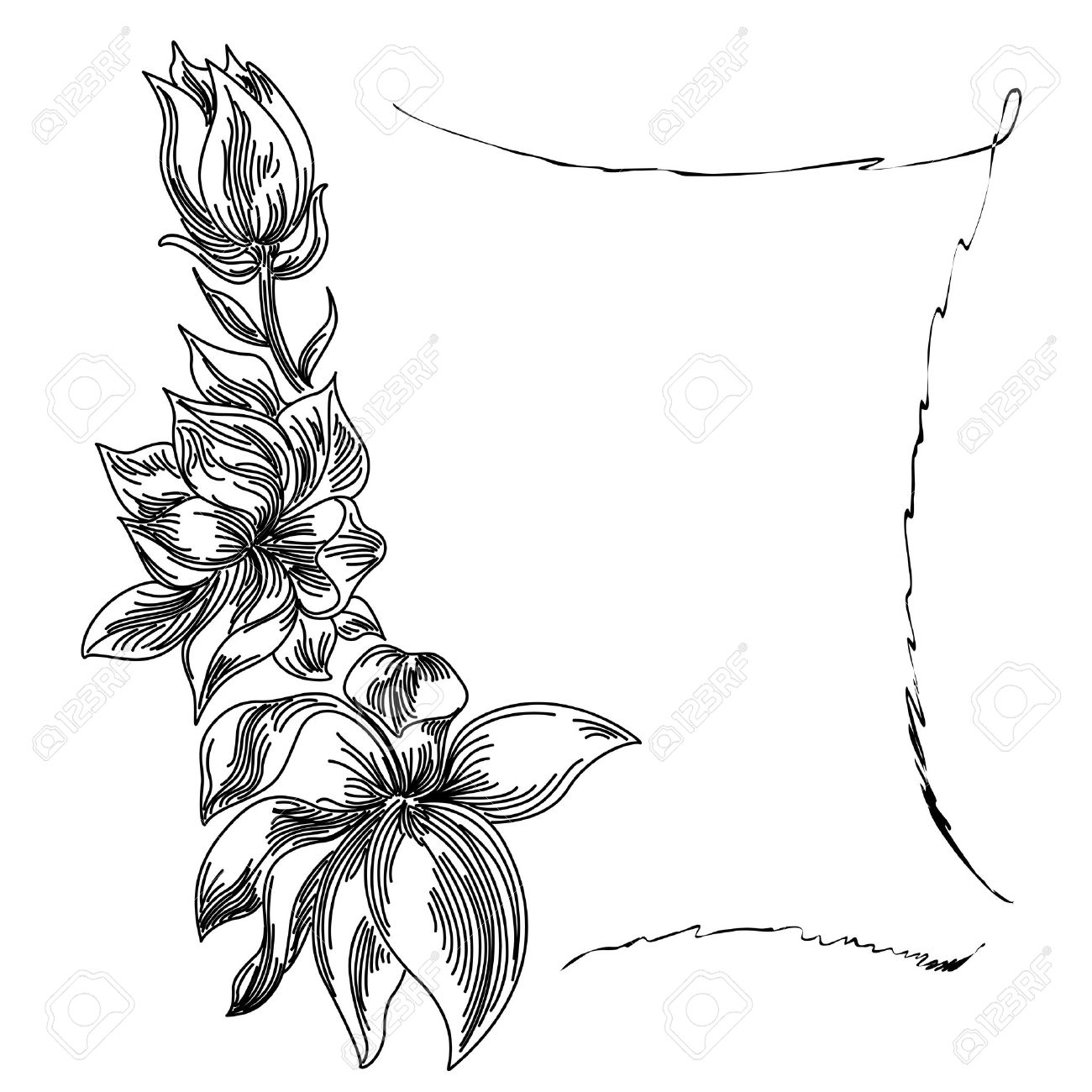 Floral Background Flower Frame Black White Royalty Free Cliparts