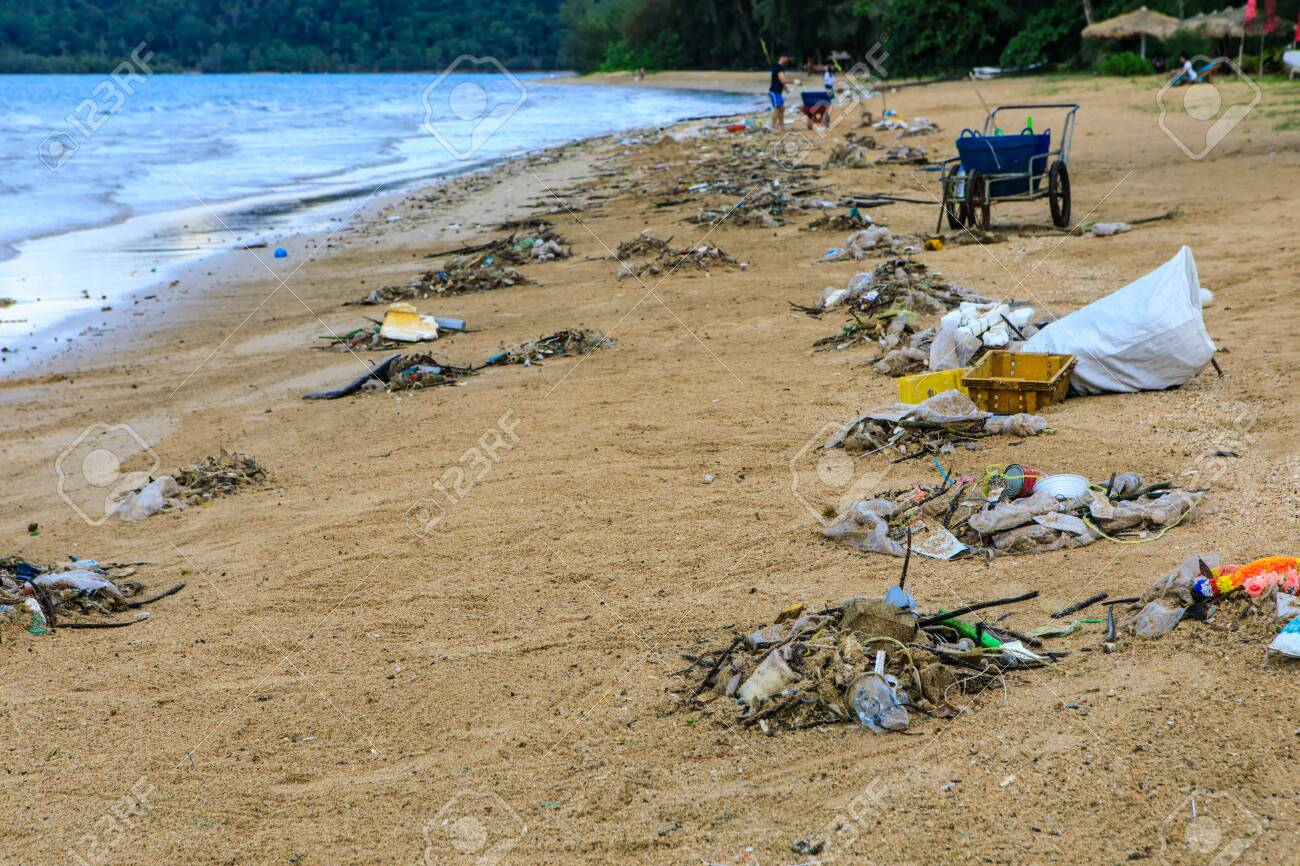 Lots of trash blow from sea to the beach. - 106342764