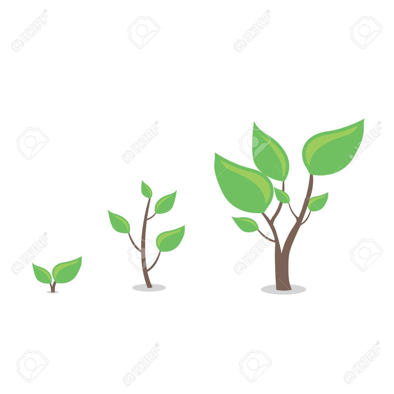 Plantes De Dessin Animé En Croissance