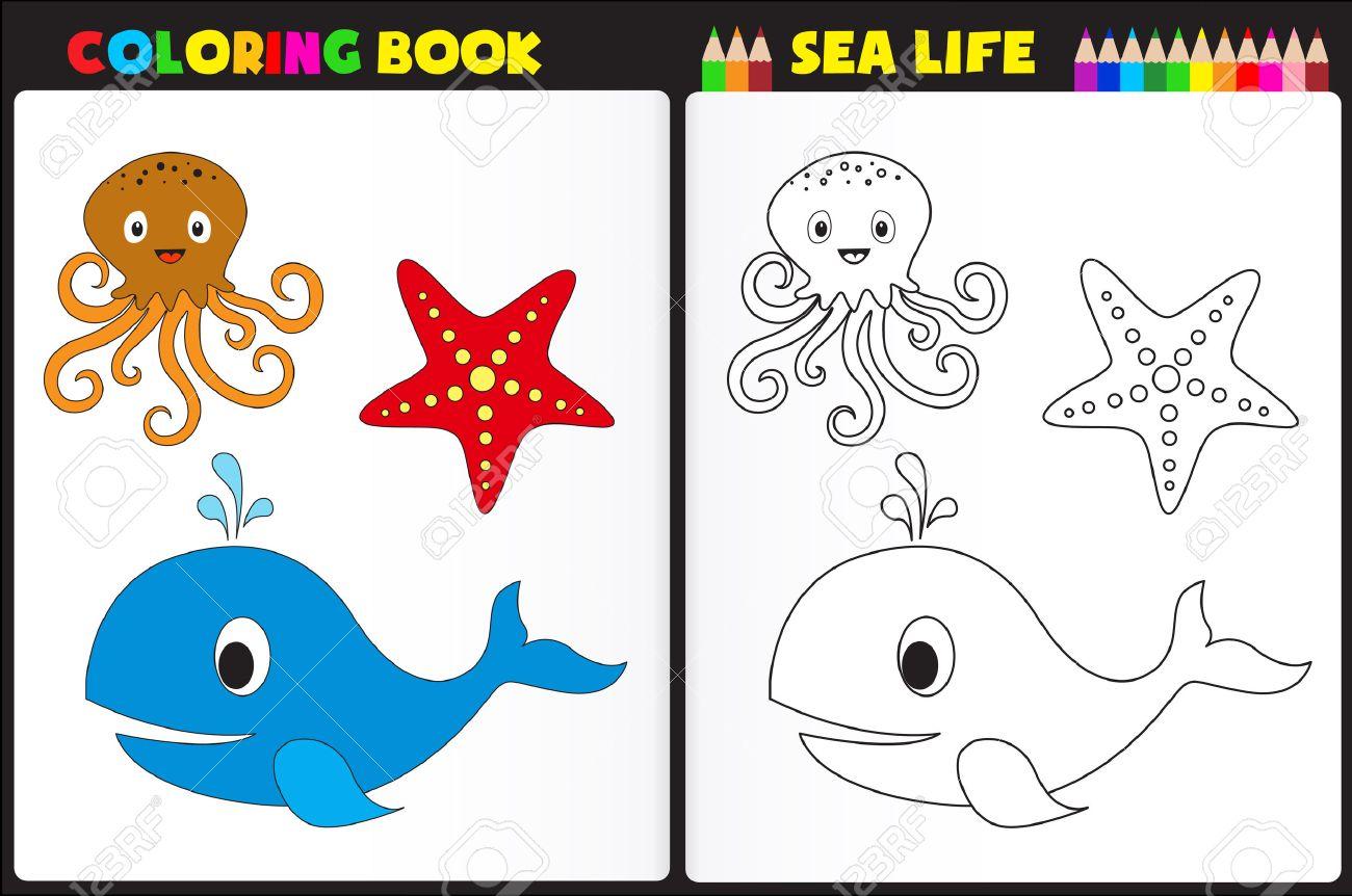 Libro Para Colorear Naturaleza Página / Actividad Hoja De Trabajo ...