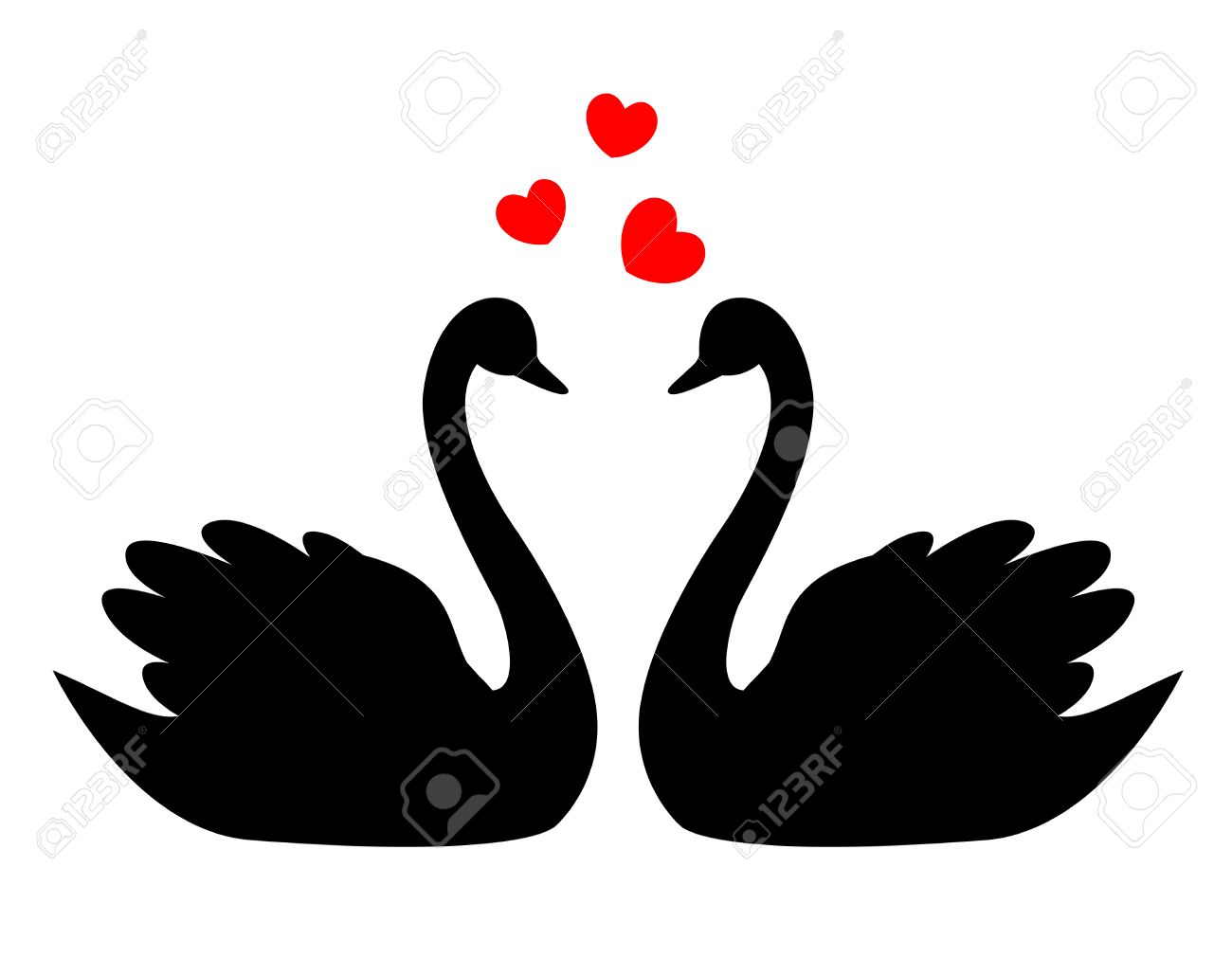 Swan Couple In Love Illustration / Clipart Isolated On White ...