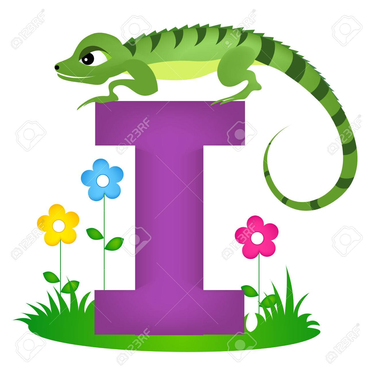 colorful animal alphabet letter i with a cute iguana flash card
