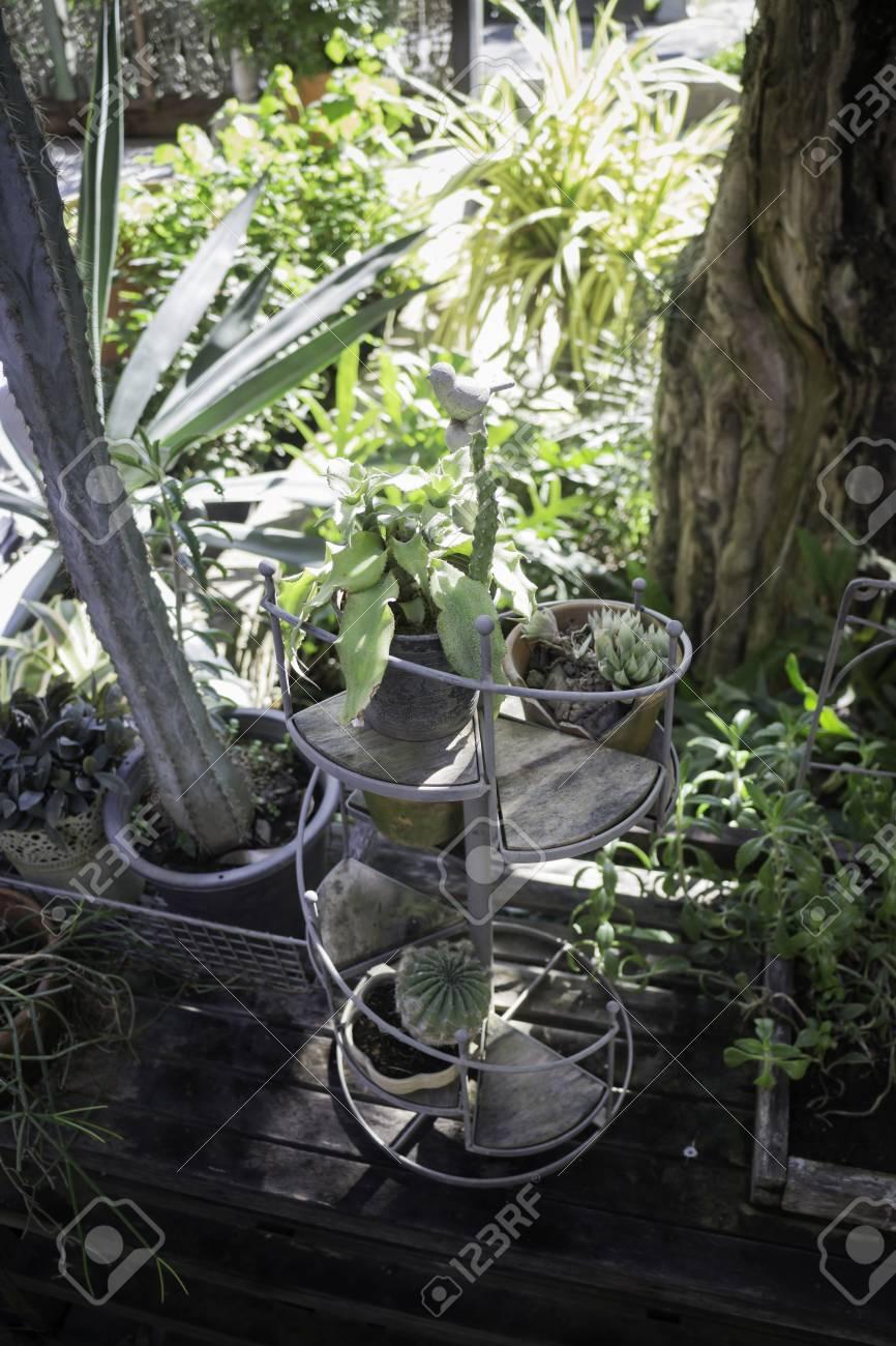 Mini plant pots decorated in the garden, stock photo Standard-Bild - 95202048