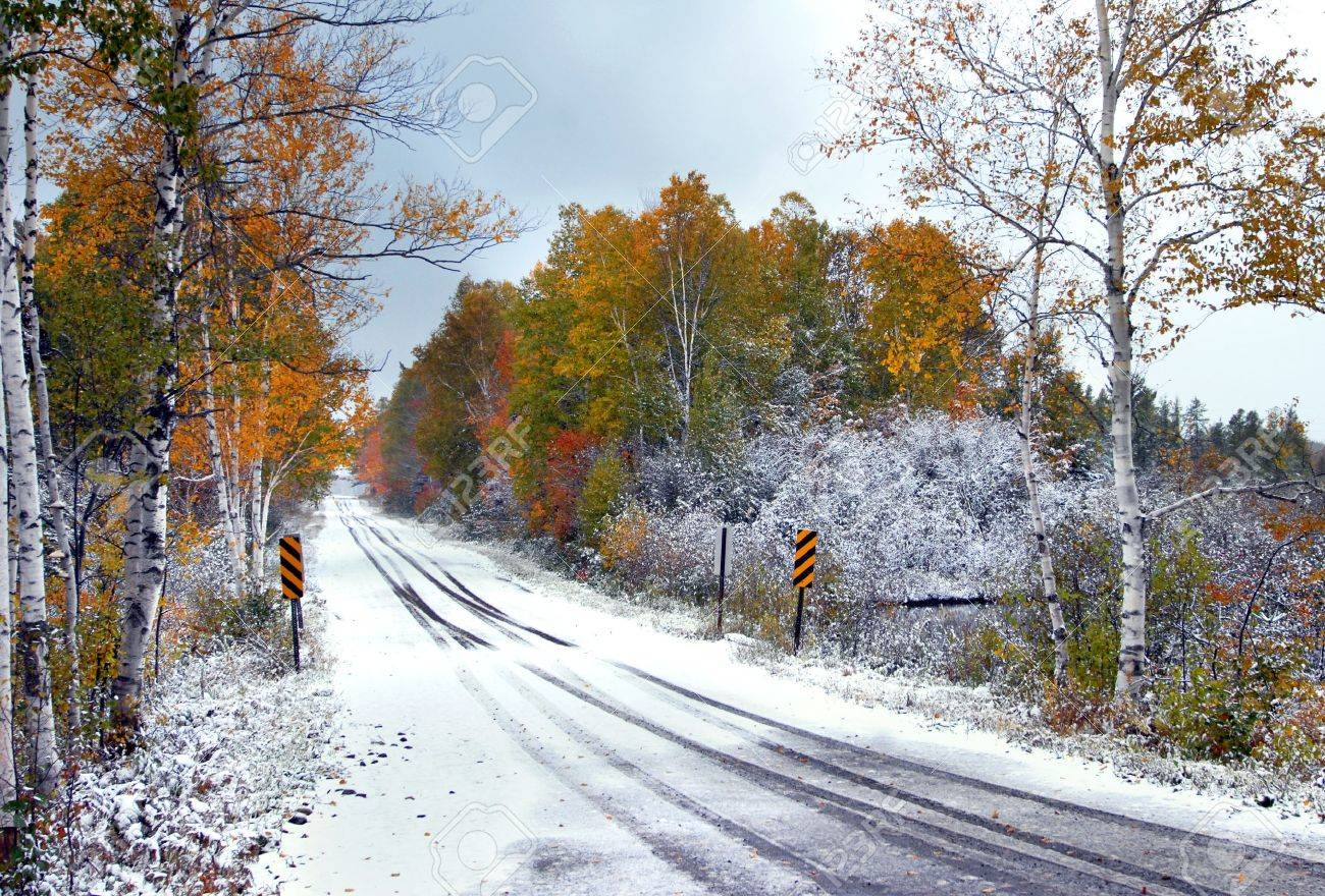 Highway disappears into a tunnel of overhanging branches of gold and red. Tire tracks in the snow disappear into the colorful leaves. - 14832396