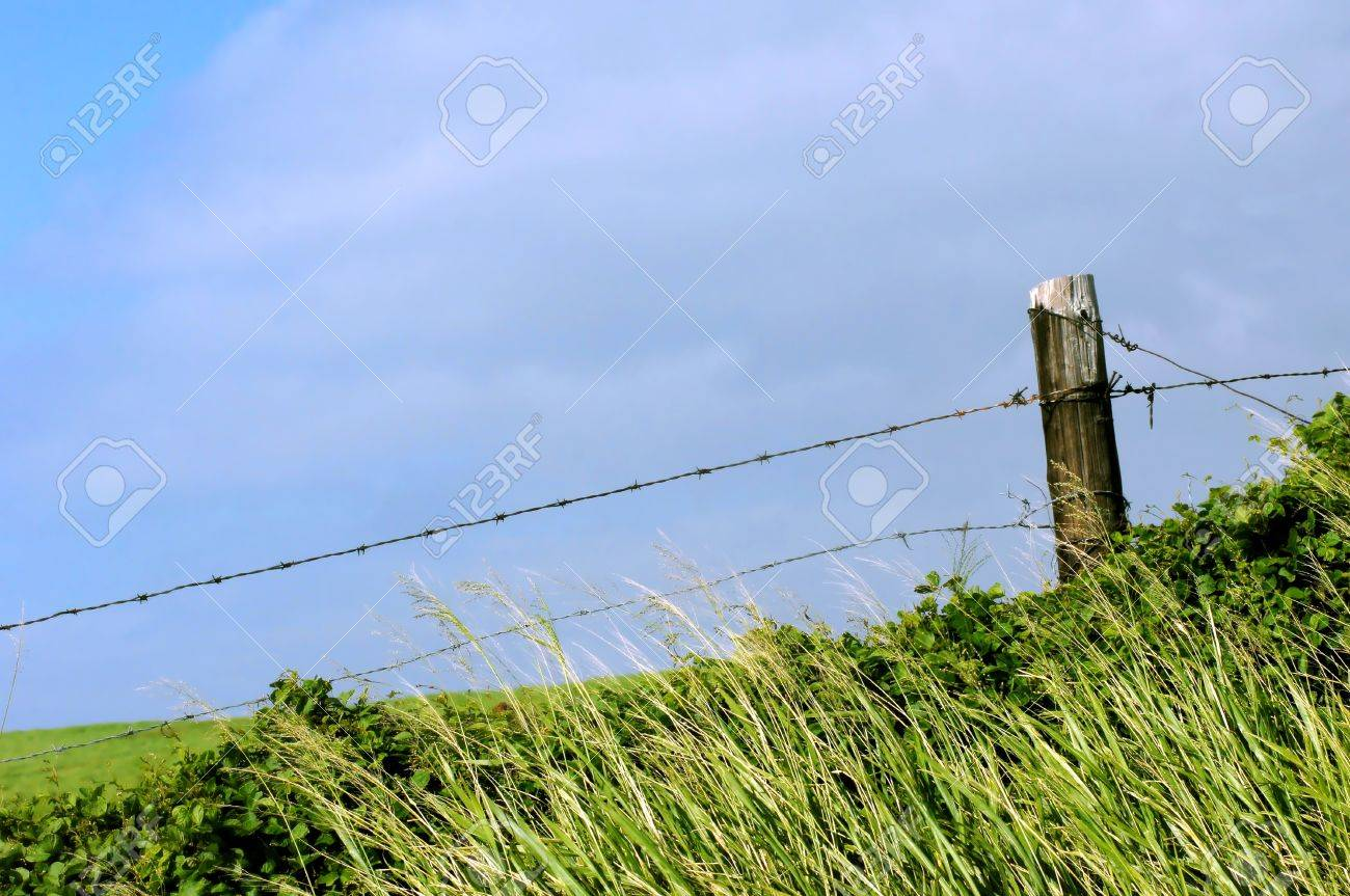 An Old Barbed Wire Fence On The Big Island Of Hawaii Is Slowly ...