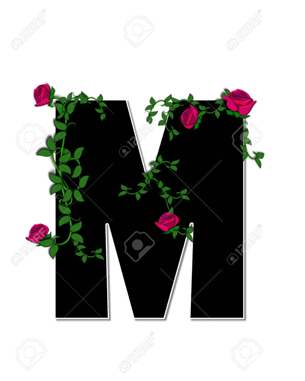 The Letter M In The Alphabet Set Rose Trellis Is Black With