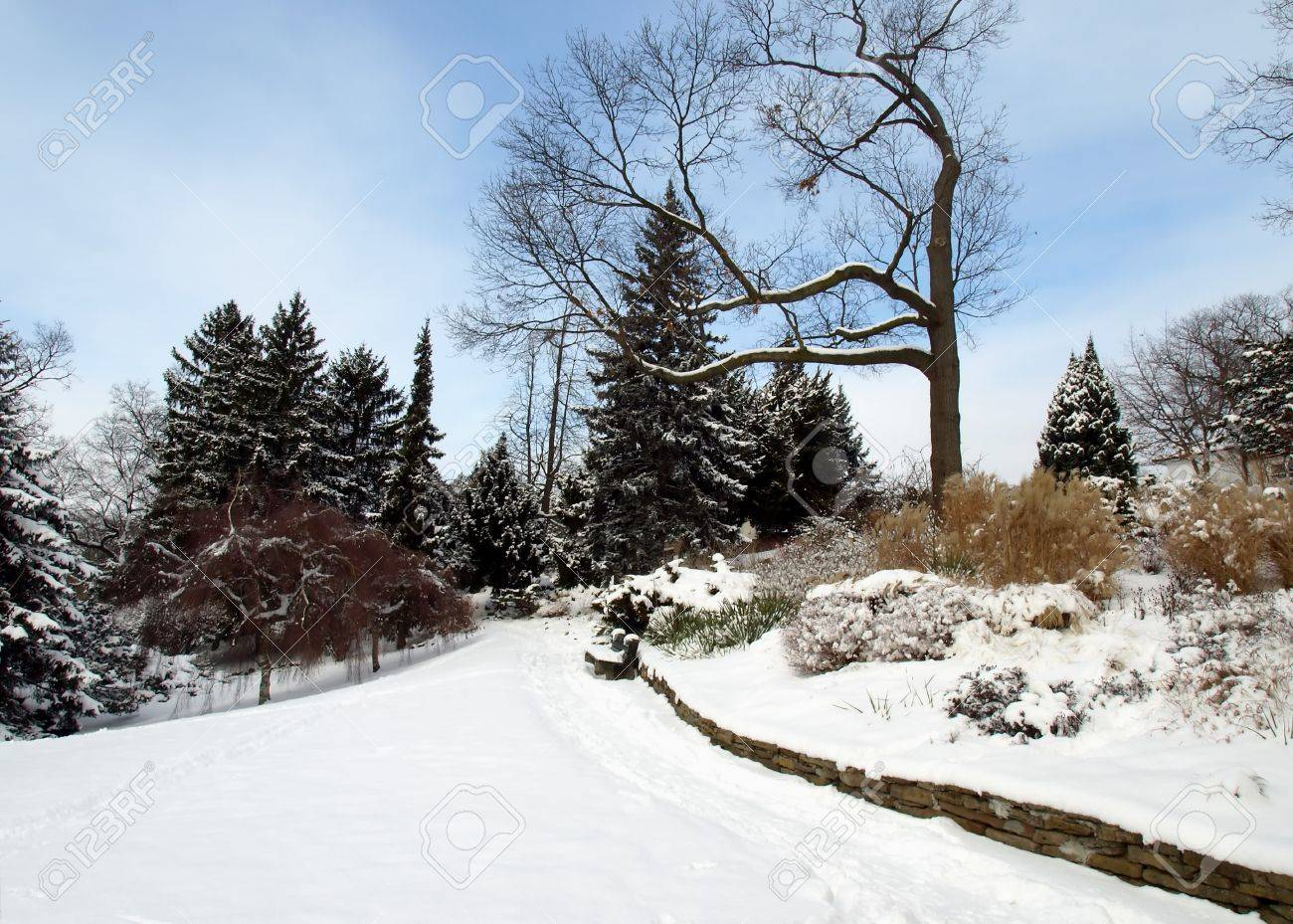 winter garden snow scene with park bench stock photo picture and