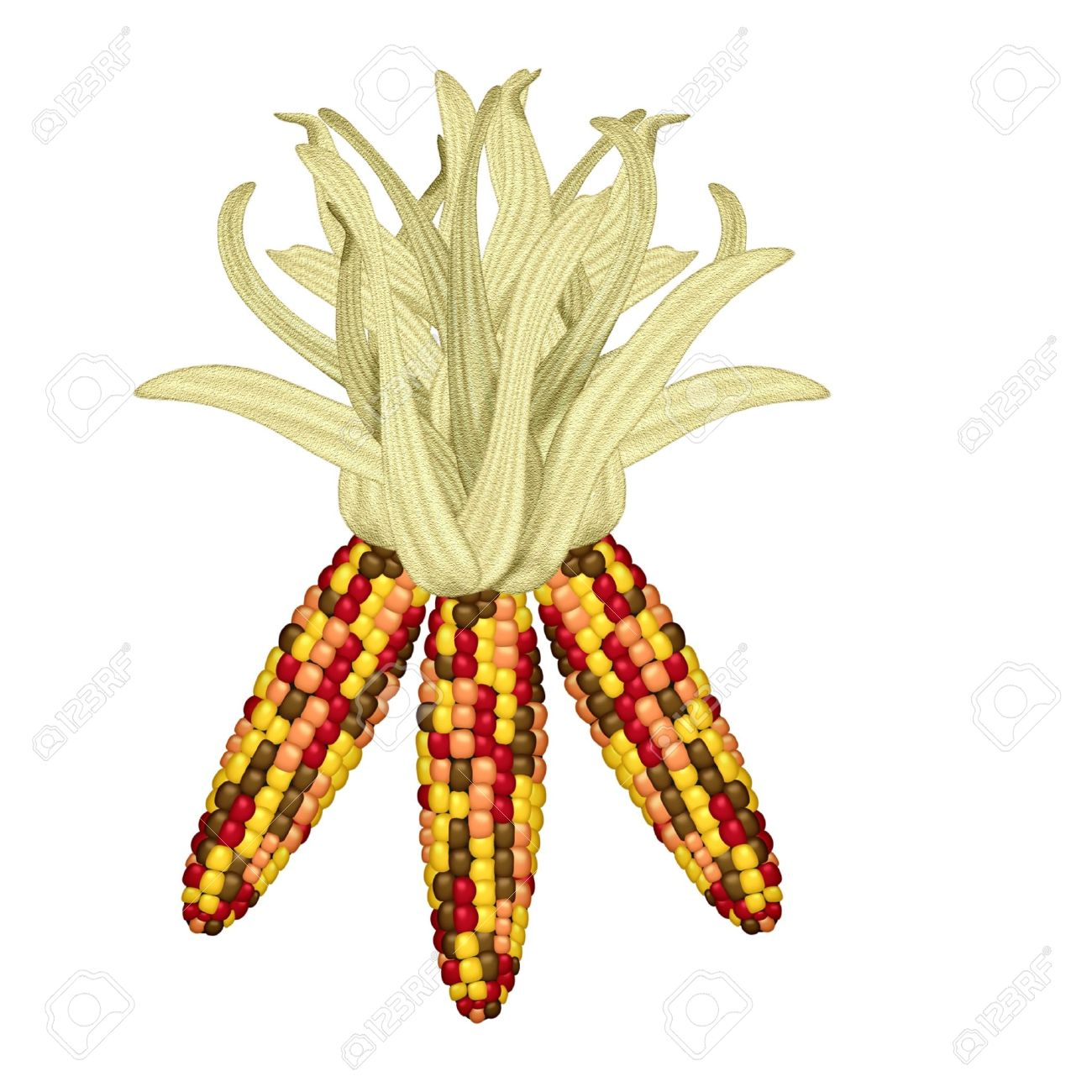 50 442 corn cliparts stock vector and royalty free corn illustrations rh 123rf com Corn Stalk Clip Art indian corn clipart black and white